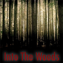 1995 - Into The Woods