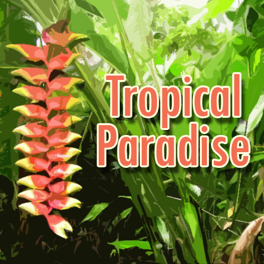 1993 - Tropical Paradise